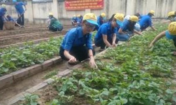 Chi đoàn VSND tỉnh Khánh Hòa tham gia xây dựng công trình......